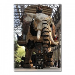 MAGNET PHOTO ELEPHANT SOUS LES NEFS