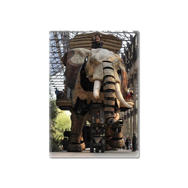 MAGNET PHOTO ELEPHANT SOUS LES NEFS