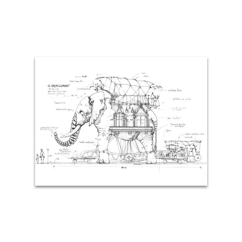 CROQUIS ELEPHANT