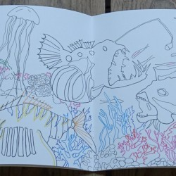 Cahier à dessiner et à colorier